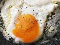 Enkelstekt ägg i en varm panna fotografering för bildbyråer