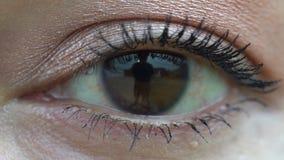 Enkelt ögonslut för ultrarapid upp lager videofilmer