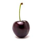 enkelt Cherry Fotografering för Bildbyråer