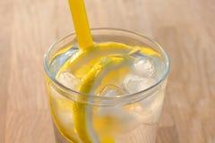 Enkelt exponeringsglas av isvatten med citronskivor Royaltyfri Fotografi