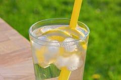 Enkelt exponeringsglas av isvatten med citronskivor och sugrör Arkivfoto