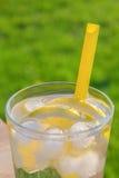 Enkelt exponeringsglas av isvatten med citronskivor och sugrör Royaltyfri Bild