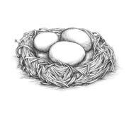 Enkelt fågelrede med ägg royaltyfri illustrationer
