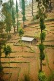Enkelt hus på att slutta slätten. Royaltyfria Bilder