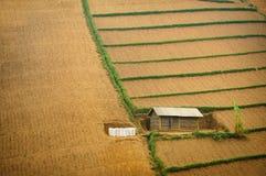 Enkelt hus på att slutta slätten. Royaltyfri Bild