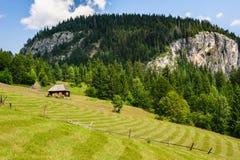 Enkelt hus på en äng i berg Arkivfoton