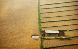 Enkelt hus på odlingsmark Royaltyfri Foto