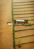 Enkelt hus på odlingsmark Fotografering för Bildbyråer