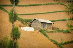 Enkelt hus på odlingsmark Arkivfoto