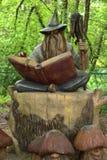 Enkelt stillebenfoto av trätrollkarlen med boken i skogen royaltyfri bild
