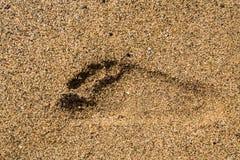 Enkelt tryck för höger fot i sand Royaltyfri Fotografi