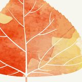 Enkla Autumn Background Royaltyfri Bild
