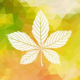 Enkla Autumn Background Royaltyfria Foton