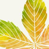 Enkla Autumn Background Arkivfoto