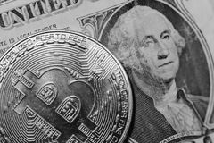 Enkla Bitcoin som visar yttersidadetaljen av coinagen Royaltyfri Fotografi