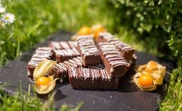 Enkla chokladkvarter/stänger Royaltyfri Bild