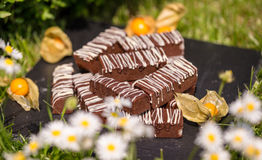 Enkla chokladkvarter/stänger Fotografering för Bildbyråer