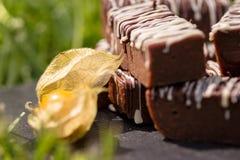 Enkla chokladkvarter/stänger Royaltyfri Fotografi