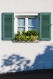 Enkla fönster och växter Arkivbilder