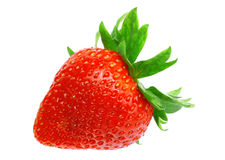 Enkla nya jordgubbar. Isolerat Royaltyfri Bild