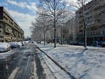 Enkla snöig däckspår - stående Royaltyfria Bilder