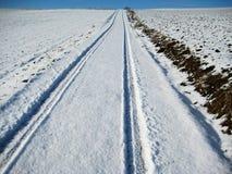 Enkla snöig däckspår - stående Fotografering för Bildbyråer