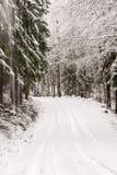 Enkla snöig däckspår - stående Royaltyfri Bild