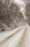 Enkla snöig däckspår - stående Arkivfoton