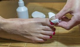 Enlever le vernis à ongles La procédure de la pédicurie photo stock