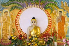 Enlightened Buddha Sitting Under the Bodhi Tree Royalty Free Stock Photos