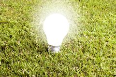 Enlightened bulb. In the grass Royalty Free Stock Images