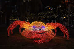 The enlightened Crab Royalty Free Stock Photos