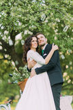 Enloved bride and groom in a park holding under tree decorated with many lanterns Stock Photo