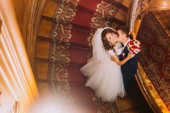 Enloved groom kissing his charming bride on old wooden stairs with the background of luxury interior Royalty Free Stock Image