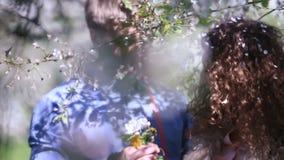 Enloved par, i att blomstra den körsbärsröda fruktträdgården med massor av vita blommor Ung man som ger den gulliga lättrogna buk arkivfilmer