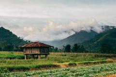 Enmadere la casa cubierta por el tejado oxidado en la granja local Imágenes de archivo libres de regalías