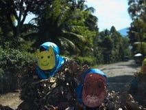 Enmascarado del carnaval Fotografía de archivo
