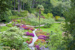 Enniskerry, Ireland - May 5: Japanese Garden at Powerscourt Royalty Free Stock Images