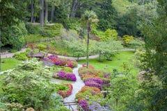Enniskerry Irland - Maj 5: Japanträdgård på Powerscourt Royaltyfria Bilder