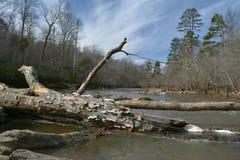 Eno river. Last winter , eno river north carolina royalty free stock image