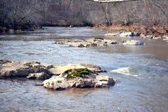 Eno river. Last winter , eno river north carolina royalty free stock photography