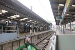 Enoden linje i Kamakura, Japan Arkivbild