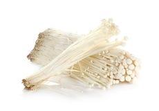Enoki champinjon, guld- visarchampinjon som isoleras på vit Arkivbilder