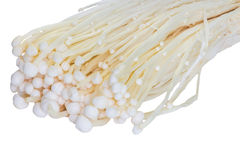 Enoki mushrooms Stock Photo
