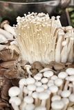 Enoki  and  shiitake mushroom Stock Photography