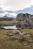 Enol Lake Stock Photography