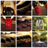 Enologia i wino kolaż Zdjęcie Stock