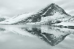 enolu jezioro Obraz Royalty Free