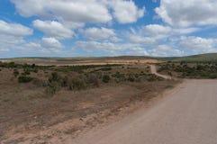 Enorm Afrikaans savannelandschap met open weg stock foto