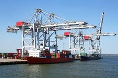 Enorm behållare som behandlar lastningsbryggakranar på en behållareterminal Päfyllningslastfartyg blå sky för bakgrund Arkivbild